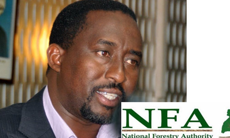 NFA BOSS ARRESTED OVER ENCROACHMENT